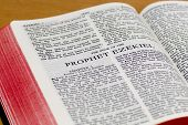 Bible Page - Ezekiel
