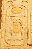 stock photo of hieroglyph  - Scarab hieroglyph in the Temple of Queen Hatshepsut in Egypt - JPG