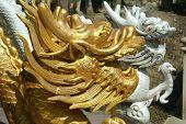 Head Of A Golden Dragon