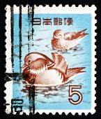 Postage Stamp Japan 1955 Mandarin Ducks, Bird