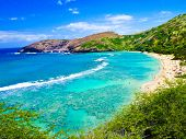 pic of shoreline  - Hanauma Bay - JPG