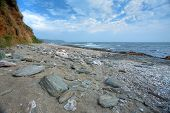 picture of devonshire  - Langerstone Point at East Prawle - JPG