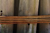 Rope And Wooden Piling
