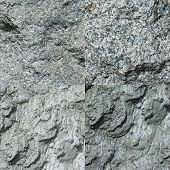 Set of four gray stone textures.