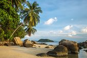 A beautiful tropical beach with palm trees at Koh Phangan island, Thailand