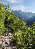 View Of High Tatra Mountains From Hiking Trail.