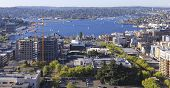 pic of virginia  - Seattle downtown South Lake Union area view from Virginia Street - JPG