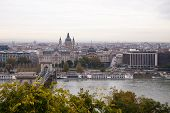 Budapest Chain Bridge on the Danube
