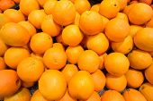 pic of stall  - Citrus fruit on the supermarket stall - JPG