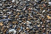 Sea Pebbles On The Coastline