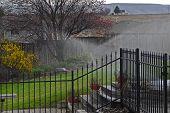 yard and sprinklers
