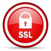ssl web icon