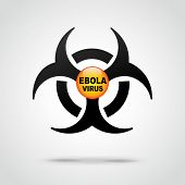 Ebola Virus Illustration