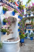 Flowers Decoration of Vintage Courtyard, typical house in Cordoba - Spain, Europe