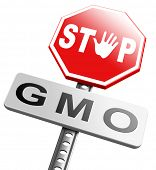 picture of genetic engineering  - no gmo stop genetic manipulated organisms or food engineering - JPG