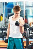 pic of triceps brachii  - athlete man workout biceps brachii muscles exercises with training dumbbell in fitness gym - JPG