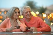 pic of old couple  - Portrait of amusing old couple on vacation  - JPG
