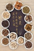 foto of chinese calligraphy  - Acupuncture needles and chinese herbal medicine selection with calligraphy script - JPG