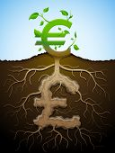 pic of bine  - Plant roots and tuber in shape of money symbol - JPG