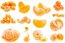 picture of mandarin orange  - Fresh Mandarin Citrus Isolated Tangerine Mandarine Orange In Heap On White Background - JPG