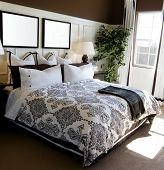 Beautiful showcase bedroom interior