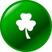shamrock or clover button