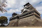 pic of shogun  - The Japanese castle - JPG