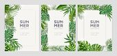 Collection Of Vertical Summer Backgrounds With Frames Or Borders Made Of Green Tropical Palm Leaves  poster