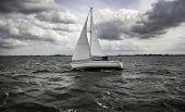 Sailing Boat Sailing poster