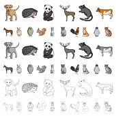 Realistic Animals Cartoon Icons In Set Collection For Design. Wild And Domestic Animals Vector Symbo poster