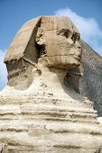 Sphinx Head