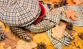 Mug Of Tea Covered Surrounded By Scarf Autumnal Background With Fallen Maple Leaves And Fir Cones. W poster