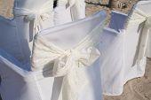 Elegant wedding chairs