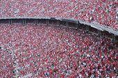 fanatic fans