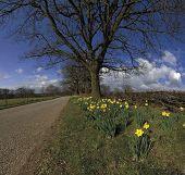 Baddesley Clinton Estate Warwickshire