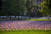 American flags on the lawn of the Columbus, Ohio statehouse
