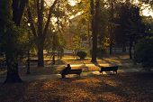 Woman Sitting On Bench In The Park. Woman On The Bench In The Park In Autumn. Autumn Colors In The P poster