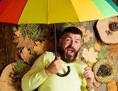 Hipster With Beard Mustache Expect Rainy Weather Hold Umbrella Enjoy Season. Man Bearded Lay On Wood poster