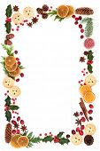 Winter and Christmas natural flora and food background border with  loose berries on white. Christma poster