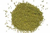 Mung beans on a white background, a good source of folic acid