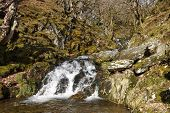 A small stream with a waterfall in the Elan Valley, Wales.