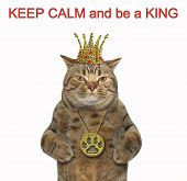 The Cat Is Wearing A Crown And A Locket. Keep Calm And Be A King. White Background. poster
