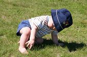 foto of little kids  - Little Boy picking at the grass - JPG