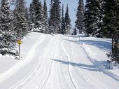 Outdoor trail in Winter used for skidoo's
