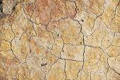 Dry soil texture
