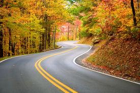 foto of twisty  - Winding road - JPG