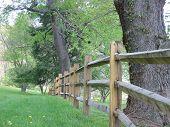 picture of split rail fence  - Split Rail fencing as a border line - JPG