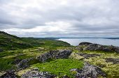 foto of murmansk  - Landscape of the polar summer tundra - JPG