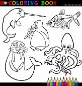 stock photo of x-ray fish  - Coloring Book or Page Cartoon Illustration of Funny Marine and Polar Animals for Children - JPG