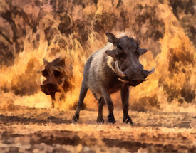 picture of bosveld  - Artistic Impression of Two Warthogs Walking Painting - JPG
